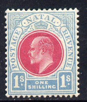 Natal 1904-08 KE7 MCA Postage-Revenue 1s carmine & pale blue mounted mint SG 155