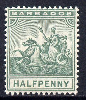 Barbados 1892-1903 Britannia Crown CA 1/2d dull green mounted mint SG 106