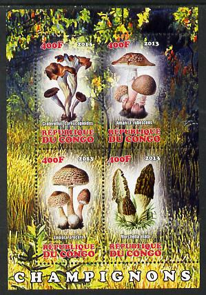 Congo 2013 Fungi #2 perf sheetlet containing four values unmounted mint