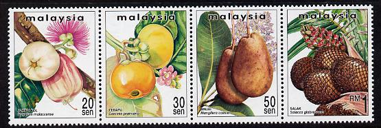 Malaysia 1999 Rare Fruits of Malaysia perf strip of 4 unmounted mint SG 719-22