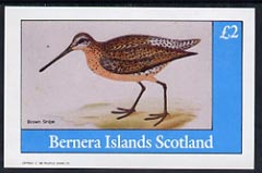 Bernera 1982 Brown Snipe imperf deluxe sheet (�2 value) unmounted mint