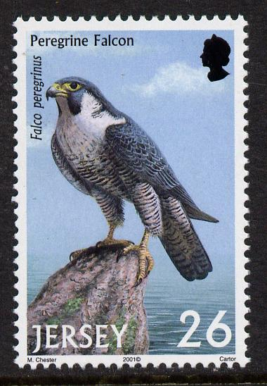 Jersey 2001 Birds of Prey - Peregrine Falcon 26p unmounted mint, SG 1000