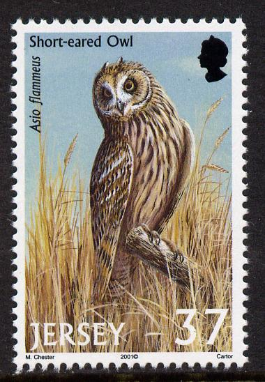 Jersey 2001 Birds of Prey - Short-Eared Owl 37p unmounted mint, SG 1001