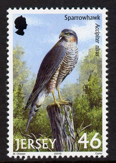 Jersey 2001 Birds of Prey - Northern Sparrow Hawk 46p unmounted mint, SG 1003