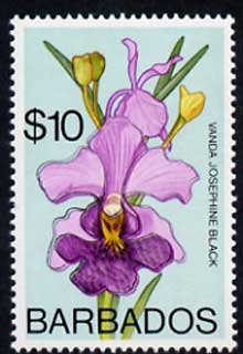 Barbados 1975-79 Josephine Black Orchid $10 with double outline due to slight colour shift unmounted mint, SG 524var