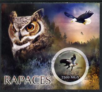 Madagascar 2014 Birds of Prey imperf m/sheet containing one circular value unmounted mint