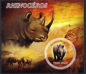 Madagascar 2014 Rhinos imperf m/sheet containing one circular value unmounted mint