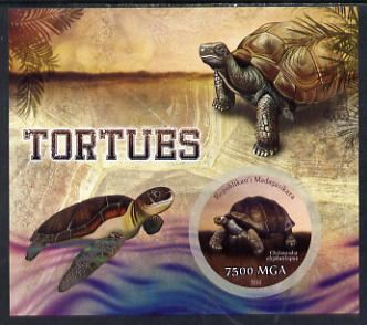 Madagascar 2014 Turtles imperf m/sheet containing one circular value unmounted mint