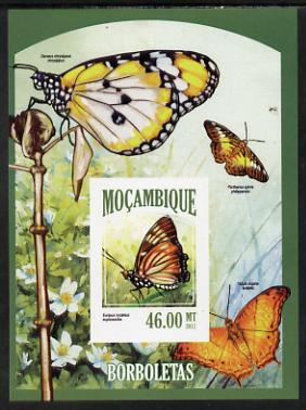 Mozambique 2013 Butterflies #6 imperf deluxe sheet unmounted mint. Note this item is privately produced and is offered purely on its thematic appeal