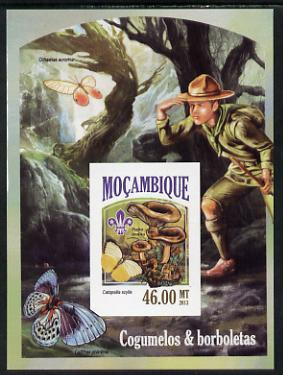 Mozambique 2013 Scouting & Butterflies #6 imperf deluxe sheet unmounted mint. Note this item is privately produced and is offered purely on its thematic appeal