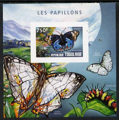 Togo 2014 Butterflies H imperf deluxe m/sheet unmounted mint. Note this item is privately produced and is offered purely on its thematic appeal