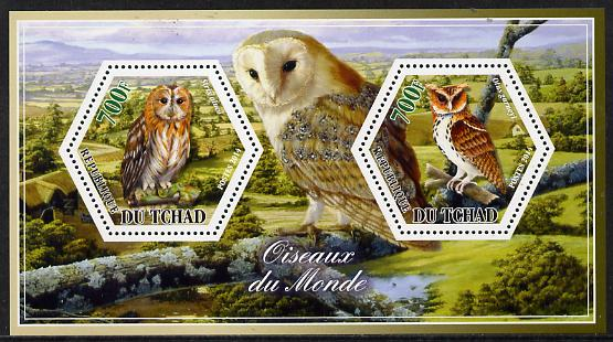 Chad 2014 Owls #1 perf sheetlet containing two hexagonal-shaped values unmounted mint