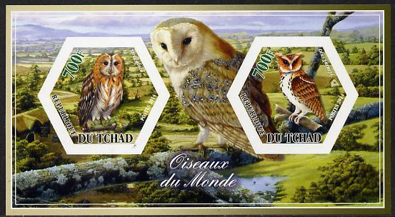 Chad 2014 Owls #1 imperf sheetlet containing two hexagonal-shaped values unmounted mint