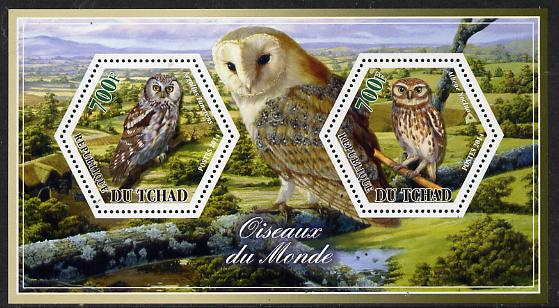 Chad 2014 Owls #2 perf sheetlet containing two hexagonal-shaped values unmounted mint