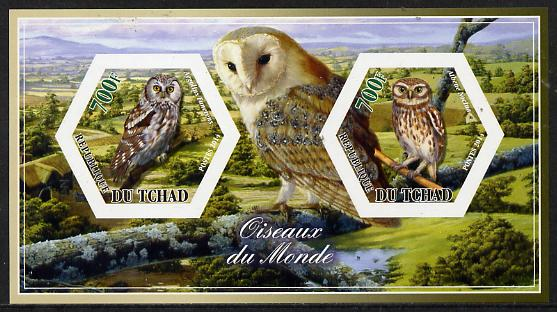 Chad 2014 Owls #2 imperf sheetlet containing two hexagonal-shaped values unmounted mint