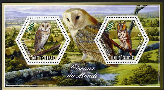 Chad 2014 Owls #3 perf sheetlet containing two hexagonal-shaped values unmounted mint
