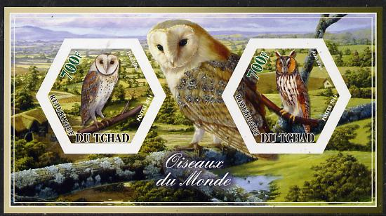 Chad 2014 Owls #3 imperf sheetlet containing two hexagonal-shaped values unmounted mint