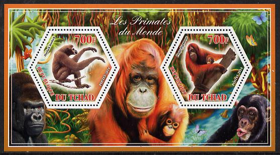 Chad 2014 Primates of the World #2 perf sheetlet containing two hexagonal-shaped values unmounted mint