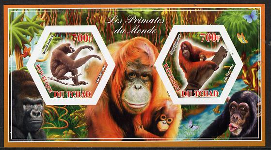 Chad 2014 Primates of the World #2 imperf sheetlet containing two hexagonal-shaped values unmounted mint