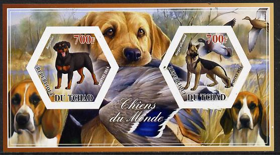 Chad 2014 Dogs #2 imperf sheetlet containing two hexagonal-shaped values unmounted mint