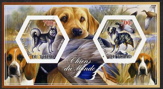 Chad 2014 Dogs #3 imperf sheetlet containing two hexagonal-shaped values unmounted mint