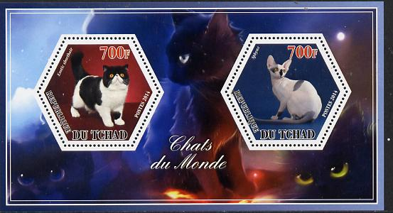 Chad 2014 Cats #1 perf sheetlet containing two hexagonal-shaped values unmounted mint