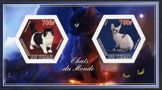 Chad 2014 Cats #1 imperf sheetlet containing two hexagonal-shaped values unmounted mint