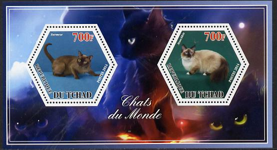 Chad 2014 Cats #3 perf sheetlet containing two hexagonal-shaped values unmounted mint , stamps on shaped, stamps on hexagon, stamps on hexagonal, stamps on cats