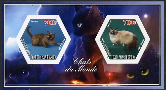 Chad 2014 Cats #3 imperf sheetlet containing two hexagonal-shaped values unmounted mint