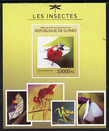 Guinea - Conakry 2014 Insects - Coccinella septempunctata (Ladybird) imperf s/sheet unmounted mint. Note this item is privately produced and is offered purely on its thematic appeal