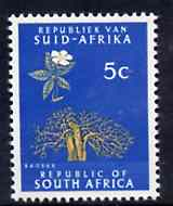 South Africa 1969 Baobab Tree 5c (Redrawn with phosphor bands) unmounted mint, SG 289*