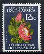South Africa 1964 Protea 12.5c black-green (Redrawn & wmk'd) unmounted mint, SG 247*