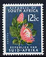 South Africa 1964 Protea 12.5c blue-green (Redrawn & wmk'd) unmounted mint, SG 247a*