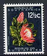 South Africa 1961 Protea 12.5c (wmk'd) unmounted mint, SG 207