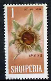 Albania 1965 Winter Fruits 1L Chestnut unmounted mint, Mi 912