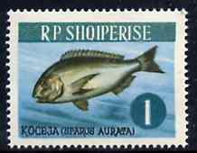 Albania 1964 Gilthead 1L unmounted mint, Mi 810