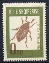 Albania 1963 Polyphylla fullo 0L50 from Insects set unmounted mint, Mi 735