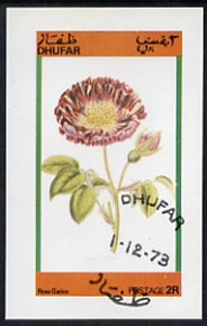 Dhufar 1973 Flowers (Rosa Galica) imperf souvenir sheet (2R value) cto used