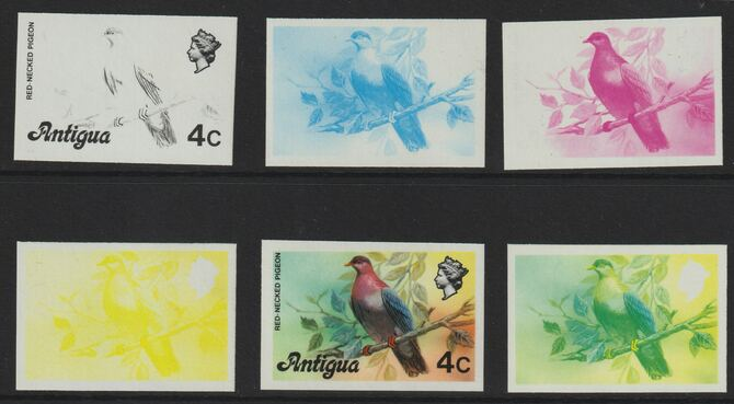 Antigua 1976 Red-necked pigeon 4c (without imprint) set of 5 imperf progressive colour proofs comprising the 4 basic colours plus blue & yellow composite (as SG 473A) unm...