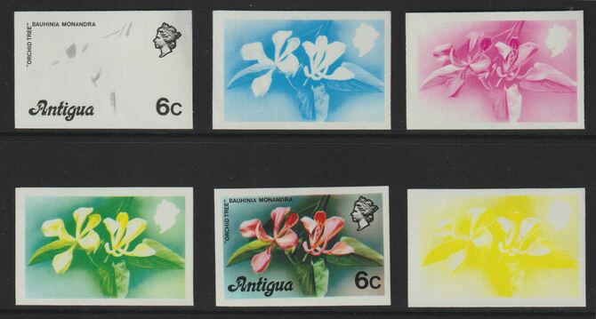Antigua 1976 Orchid Tree 6c (without imprint) set of 5 imperf progressive colour proofs comprising the 4 basic colours plus blue & yellow composite unmounted mint (as SG ...