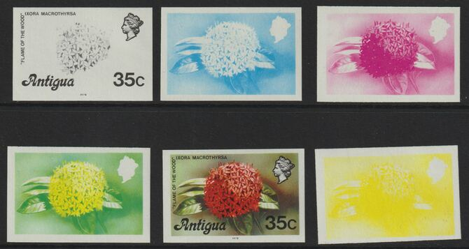 Antigua 1976 Flames of the Wood 35c (with imprint) set of 5 imperf progressive colour proofs comprising the 4 basic colours plus blue & yellow composite (as SG 480B) unmo...