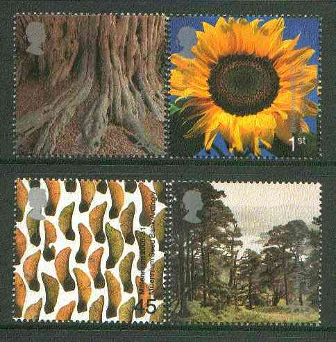 Great Britain 2000 Millennium Projects #08 - Tree & Life set of 4 unmounted mint SG 2156-59