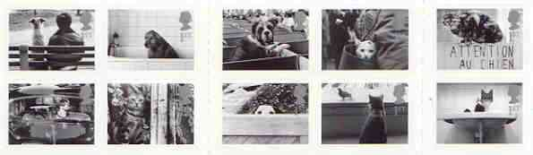 Booklet - Great Britain 2001 Cats & Dogs Booklet containing set of 10 self-adhesive first class stamps