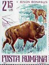 Rumania 1977 Bison from Endangered Animals set unmounted mint, SG 4287, Mi 3420*