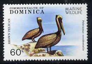 Dominica 1979 Brown Pelican 60c unmounted mint from Marine Wildlife set, SG 663*