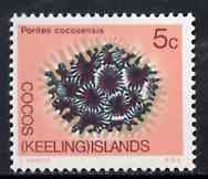 Cocos (Keeling) Islands 1969 Coral 5c value from 1969 Decimal Currency def set unmounted mint, SG 12