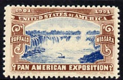 Cinderella - United States 1901 Pan American Exposition perforated label showing Niagara Falls in brown & blue*