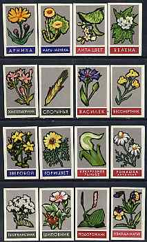 Match Box Labels - complete set of 16 Flowers, superb unused condition (Russian)