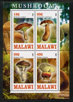 Malawi 2013 Fungi #3 perf sheetlet containing 4 values unmounted mint