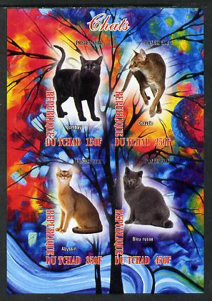 Chad 2013 Domestic Cats #1 imperf sheetlet containing 4 values unmounted mint